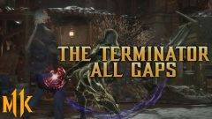 The Terminator - All Gaps